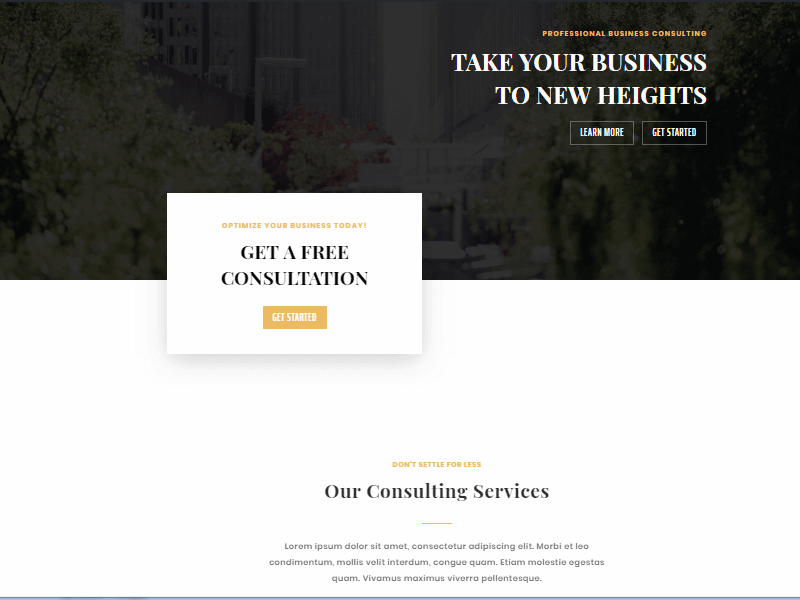 business consultant preview